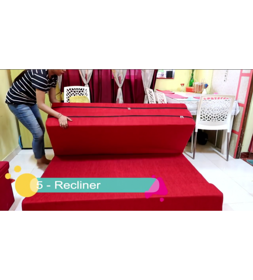 Sofa Cum Bed SCB041
