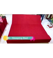 Sofa Cum Bed SCB041